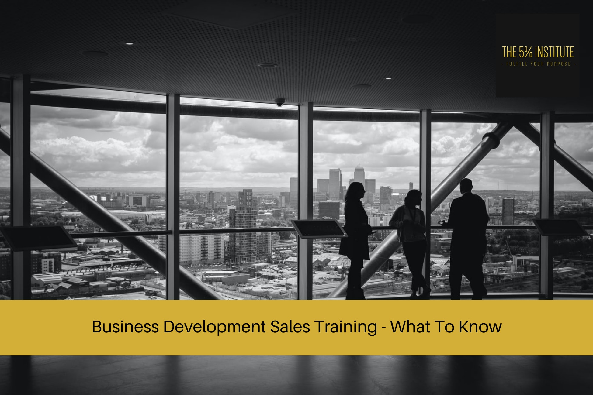 Business Development Sales Training